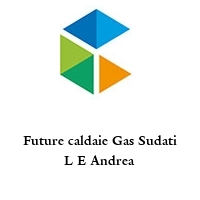 Future caldaie Gas Sudati L E Andrea