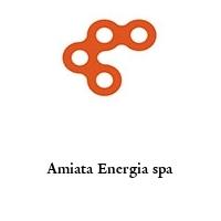 Amiata Energia spa