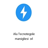 Alu Tecnotegole marsigliesi  srl