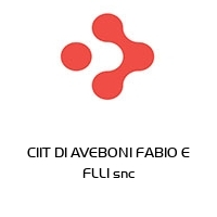 CIIT DI AVEBONI FABIO E FLLI snc