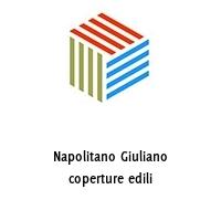 Napolitano Giuliano coperture edili