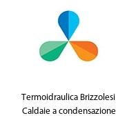 Termoidraulica Brizzolesi Caldaie a condensazione
