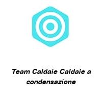 Team Caldaie Caldaie a condensazione
