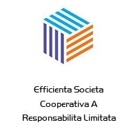 Efficienta Societa Cooperativa A Responsabilita Limitata