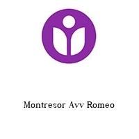 Montresor Avv Romeo
