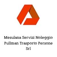 Mesulana Servizi Noleggio Pullman Trasporto Persone Srl