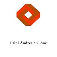 Paini Andrea e C Snc