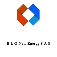 B L G New Energy S A S
