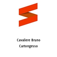 Cavaliere Bruno Cartongesso