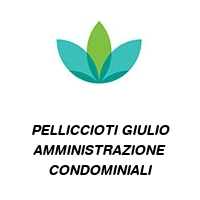 PELLICCIOTI GIULIO AMMINISTRAZIONE CONDOMINIALI