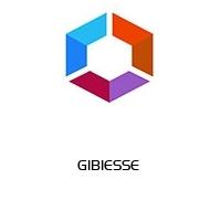 GIBIESSE