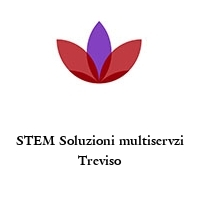 STEM Soluzioni multiservzi Treviso