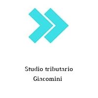 Studio tributario Giacomini