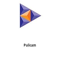Pulicam