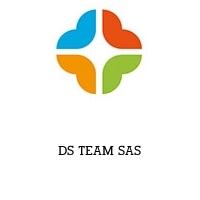 DS TEAM SAS