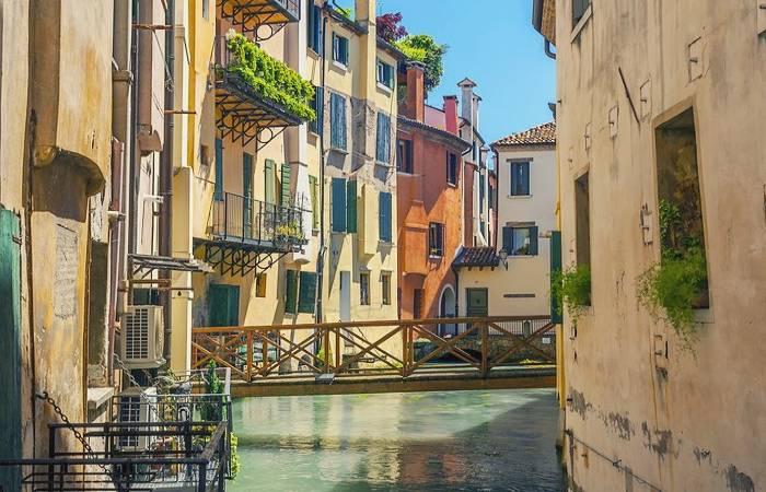 Cerco badanti a Treviso foto
