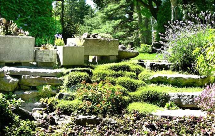 Giardino in pendenza roccioso foto 2